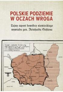 Polskie Podziemie w oczach wroga - 24,90 zł